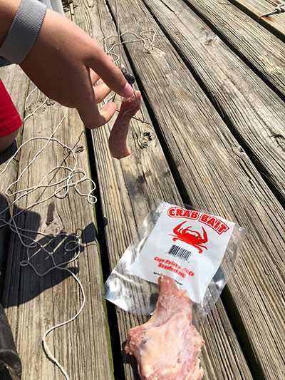 blue crab bait and line
